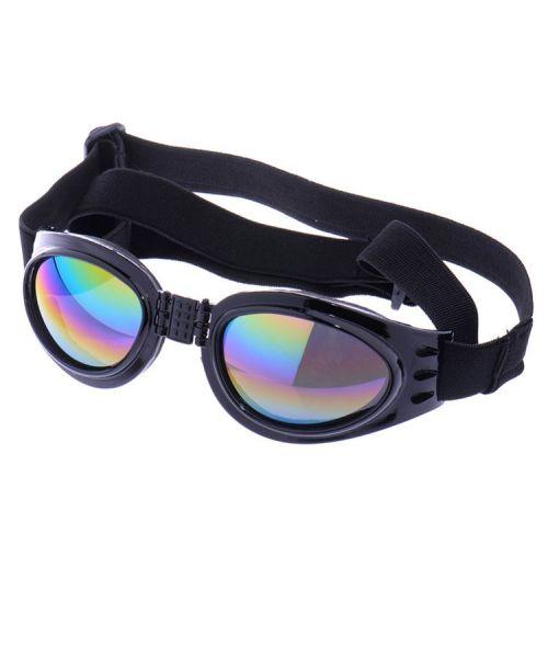 lunette-noire-pour-chien-soleil