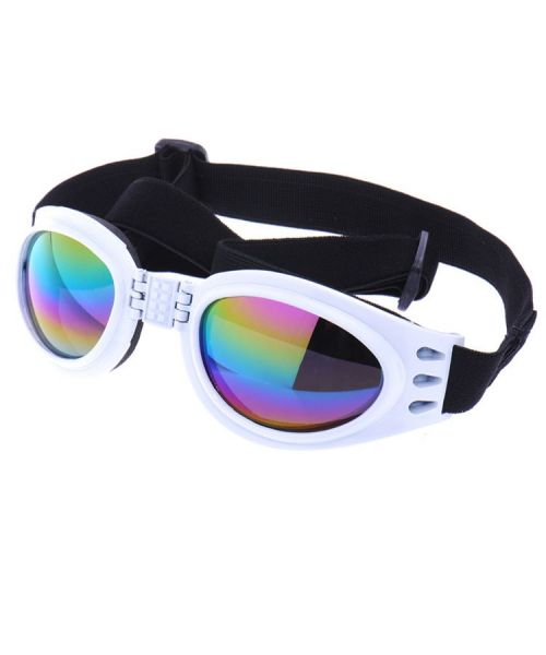 glasses-for-dogs-no-best price