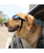 buy sunglasses for big dog fast delivery