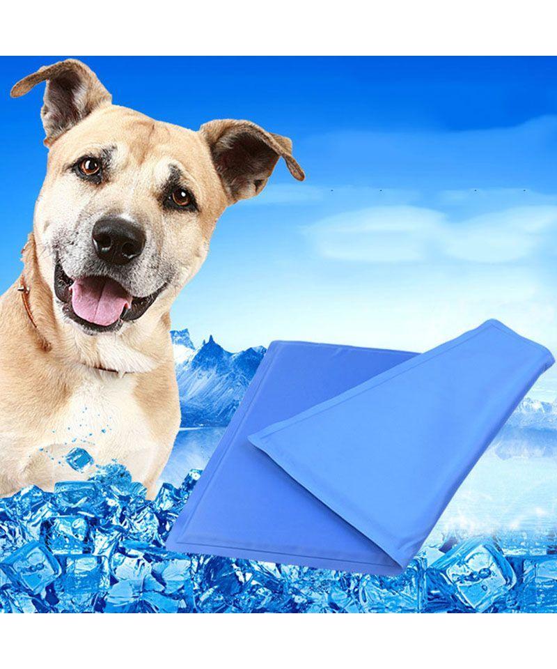 Tapis rafra chissant pour chien tapis frais chiens pas cher - Tapis rafraichissant pour chien ...