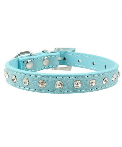 dog collar blue with rhinestones chihuahua small dog puppy bichon poodle jack russell yorkshire