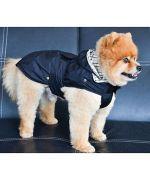 raincoat-for-dog-black-boutique-gueule-damour-marseille-paris-alpes-bretagne-nantes-montpellier