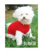 pour pour chien en laine rouge boutique pour chien originale marseille montpellier nice cannes