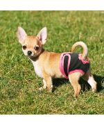 culotte pour petit chien pas chere livraison rapide livraison martinique guadeloupe ile de la reunion