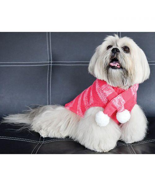 vetement pour chien d'hiver rose avec rayure pour un look chic avec écharpe guadeloupe martinique dom tom