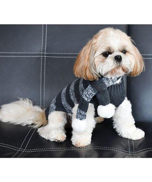 acheter vetement pour chien d'hiver gris avec rayure pour un look chic avec écharpe