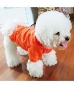 sweater for dog orange halloween small dog delivery to guadeloupe martinique reunion saint barthelemy