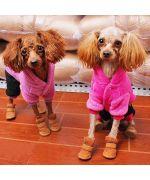 chaussures pour chien tendances originales pas cheres guadeloupe ile de la reunion martinique