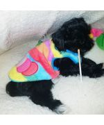fleece for dogs cheap delivery to guadeloupe, martinique, reunion, st barthelemy