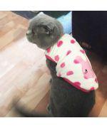 habit pour chat trop mignon en polaire pour la maison sphinx livraison guadeloupe martinique ile de la reunion st barth