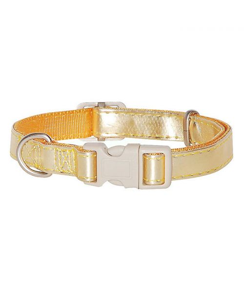 golden dog collar for small and large dogs delivery suiise martinique belgium dom tom ile de la reunion