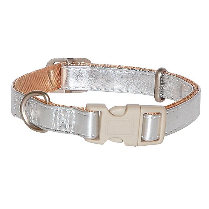 dog collar silver for small and large dogs delivery suiise martinique, belgium, dom-tom réunion island