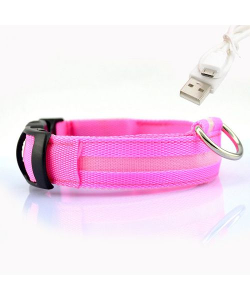 collar is bright pink dog reload usb led not cherlivraison dom-tom guadeloupe switzerland belgium