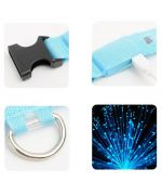 collar led dog blue yellow pink recharging usb battery pa cher
