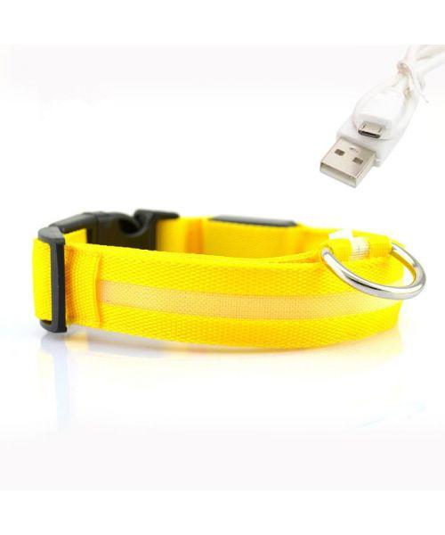 collar led dog yellow reload usb led not cherlivraison dom-tom guadeloupe switzerland belgium
