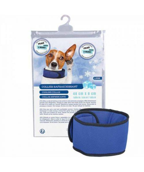 collier pour chien rafraichissant refroidissant pas cher livraison rapide