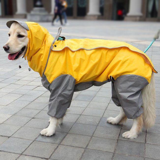 Imanteau imperméable pour chien à pattes spécial grande taille pas cher de qualité