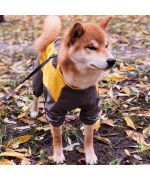 raincoat for large dog with paws comfortable soft free shipping france