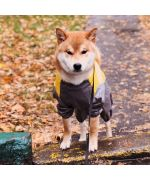 buy raincoat for large dog with paws cheap quality yellow and grey