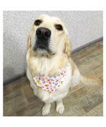 Boutique quality large dog bandana Gueule d'Amour