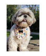 bandana pour chien shitzu pas cher de qualité très mignon boutique Gueule d'Amour
