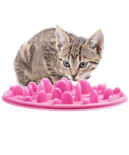 bowl for cat silicone pink for weight loss anti vomiting