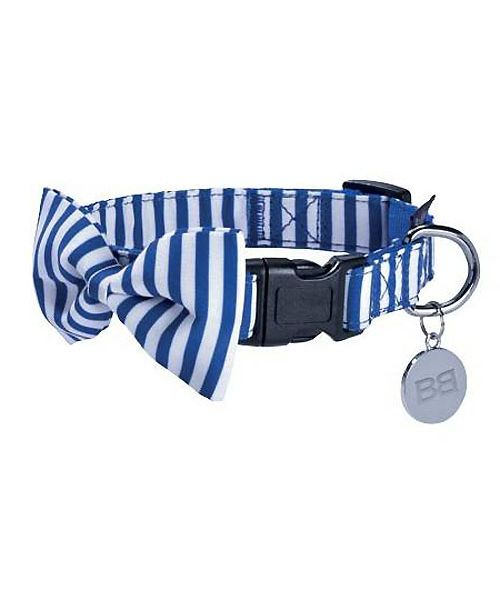 collier marin pour chien