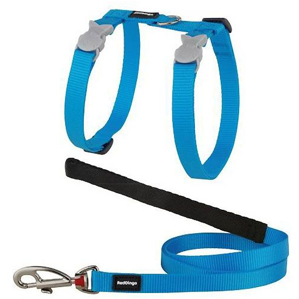 Special harness and cat Leash Blue