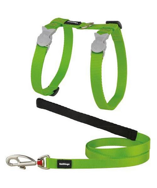 Special harness and cat Leash-Green