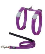 Special harness and cat Leash Purple