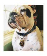 médaille tête de mort pour grand chien