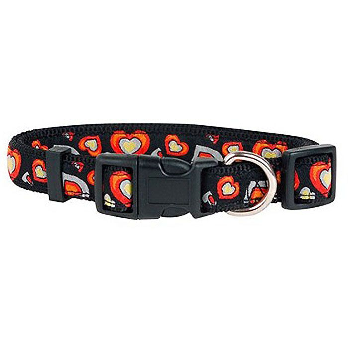 collar-for-dog-with-heart-not-expensive-delivery-free-express -