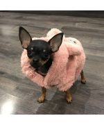 small coat for small chihuahua