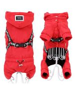 Waterproof paws dog against the rain black cheap classic delivery available