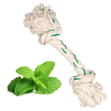 dog toy rope mint for the teeth breath fresh pet delivery dom-tom guadeloupe