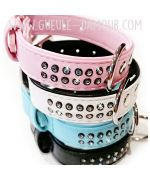 dog collar with blue rhinestones with two rows of crystals