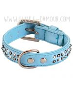 collar for small dog off with rhinestones blue two-row