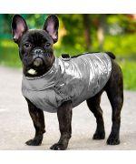 waterproof french bulldog jacket