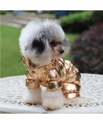 doudoune chaude pour chien chic dorée