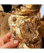 golden dog tote coat