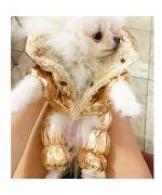manteau pour petit chien dore fourre