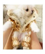 coat for small dog gold tote