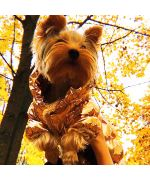 Manteau fourré pour chien - doré