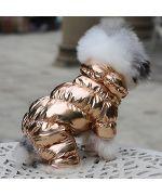 warm dog down jacket gold trend