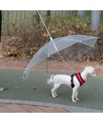 Umbrella for dog