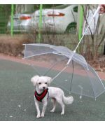 Umbrella for dog, dom-tom guadeloupe martinique switzerland belgium