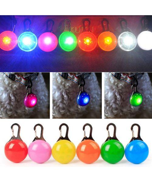 led pendant for dog light