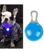 Pendentif lumineux pour chien