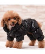 warm and furry dog jumpsuit
