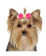 Small barrette for dog miniature special york and small long-haired dog pink, red, blue, yellow...not expensive trend